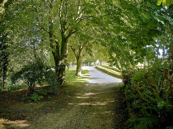 sykes garden