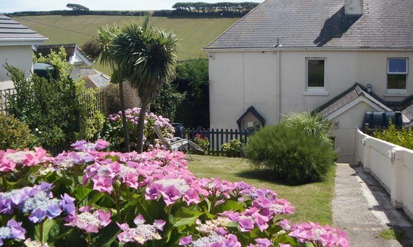 Cottage View Garden