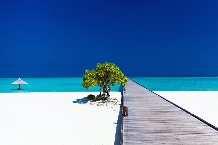 best-tropical-vacations-maldives